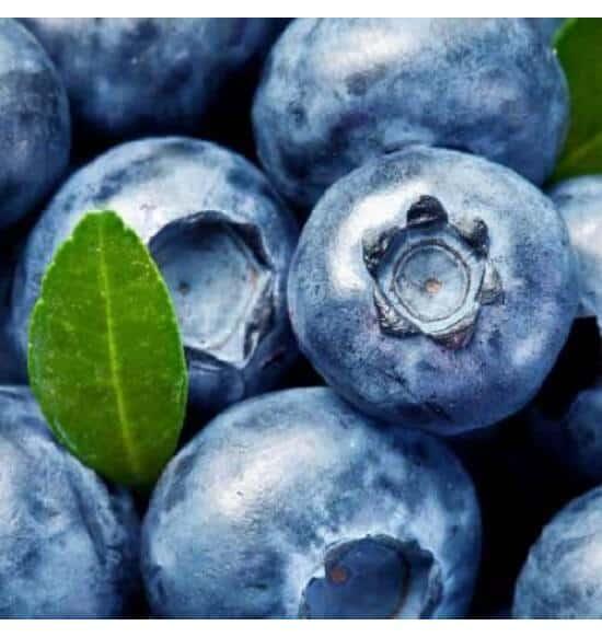 Blueberry flavour e-liquid