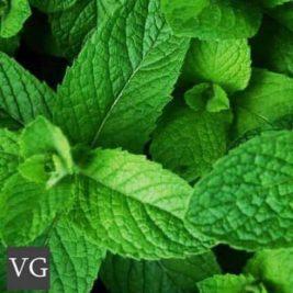 Vg Menthol flavour e-liquid